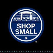 Amex Shopsmall Promotion 2016 news from top3 by design